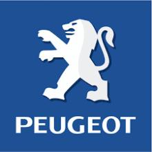 Pièces Peugeot